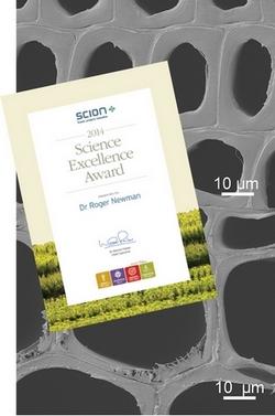 Roger Newman award