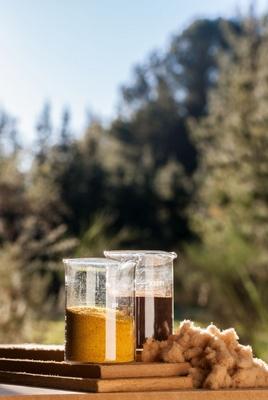Scion creates new bioadhesives