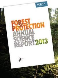fp report