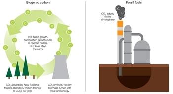 Carbon diagram