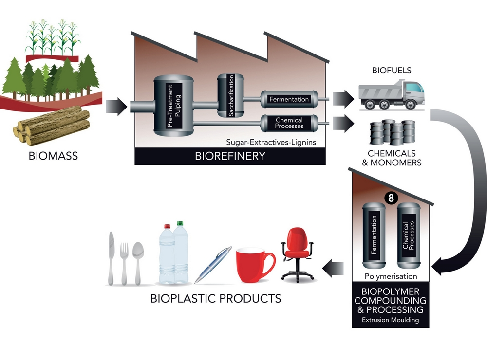 Biorefinery diagram