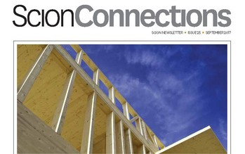 Connections 25 cover